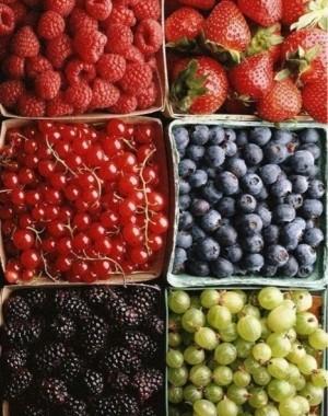 seis caixas quadradas com grutas separadas por tipos: framboesa, morango,amora, cereja e uvas